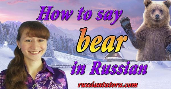 How to say bear in Russian translation